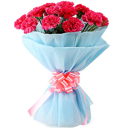 Deliver a petite Bouquet of Pink Carnations (tissue wrapped)