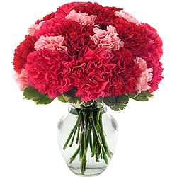 Order for a magical display of Red & Pink Carnations in a glass vase