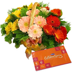 Blissful Cadbury Celebrations Pack with Assorted Gerberas Basket