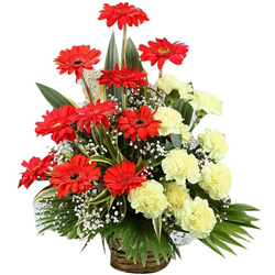 Stunning Basket of Red Gerberas with Yellow Carnations