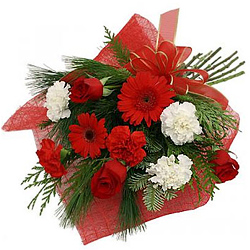 Blossoming Red Gerberas, Red Roses with Red N White Carnations Bunch