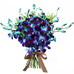 Attractive Hand Bunch of Blue Orchids