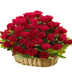 Captivating Red Roses Basket