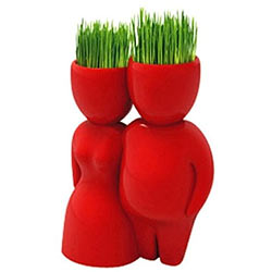 Lovely Red Lover Company Grass Hair Man Plant (Red)