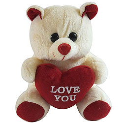 Beautiful Pink Love Teddy with Heart