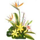 Impressive Heartiest Touch Arrangement of Lilies and Birds of Paradise