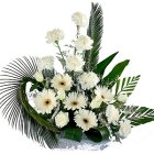 Delicate Bouquet of 2 Dozen White Blooms